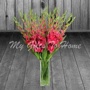Gladiolus Vase