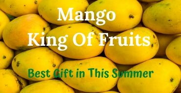 Mango King Of Frutis